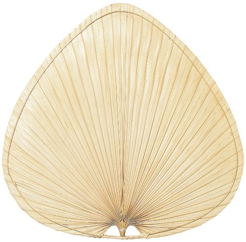 Fanimation ISP1 Blade Wide Oval, 22-Inch, Palm, Set of 5