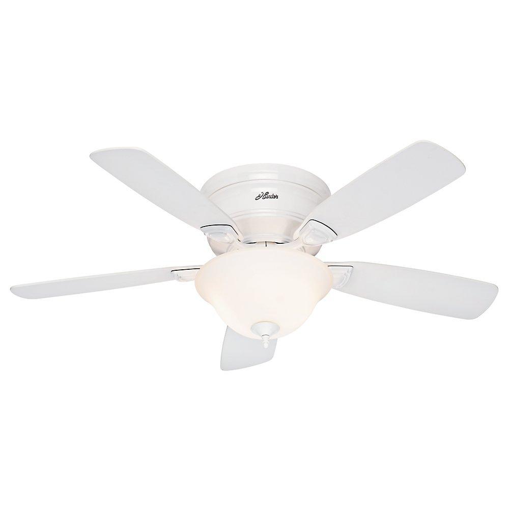 Hunter Fan 52062 Low Profile Plus Ceiling Fan with Five Oak Blades and Cased Glass Light Kit, 48-Inch, White
