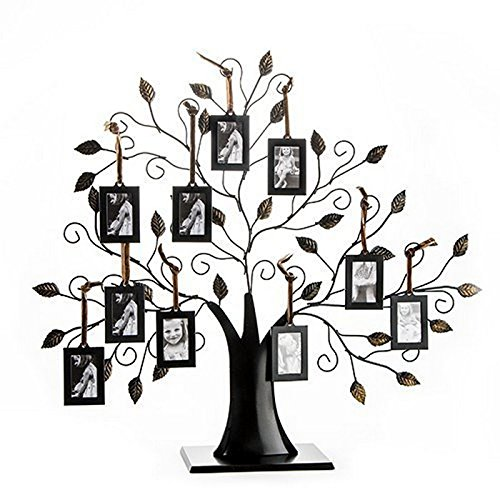 Klikel Family Tree Frame Display with 10 Hanging Picture Photo Frames